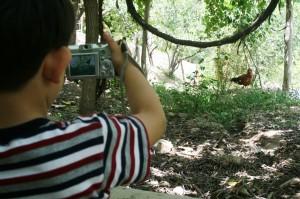 فراخوان هفتمین جشنواره عکس کودک