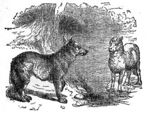 the_wolf_and_the_lamb